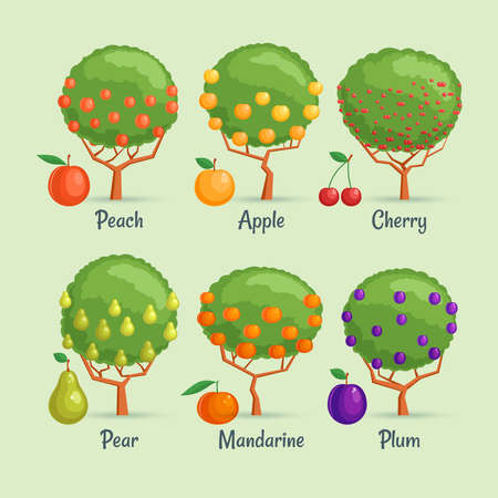 Fruit trees set. Cartoon images of garden berries. Vector illustration Stock Illustratie