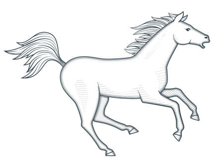 Galloping horse vector illustration Ilustrace