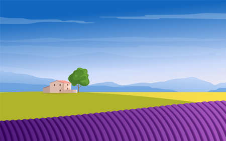 Lavender field mountains and trees Banque d'images - 148503536