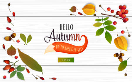 Autumn sale banner design template on a white wooden table. Colorful autumn leaves, physalis, rowan berries and fox tail. Poster for fall season shopping promotion. Realistic vector illustration Illustration