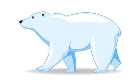 Polar bear animal standing on a white background. Cartoon style vector illustration