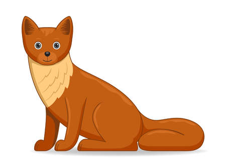 Marten animal standing on a white background. Cartoon style vector illustration