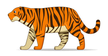 Amur tiger animal standing on a white background. Cartoon style vector illustration Illustration