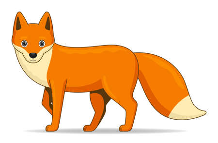 Red fox animal standing on a white background. Cartoon style vector illustration Illustration