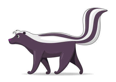 Skunk animal standing on a white background. Cartoon style vector illustration