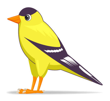 Goldfinch bird on a white background. Cartoon style vector illustration