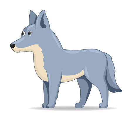 Grey Wolf animal standing on a white background. Cartoon style vector illustration Illustration