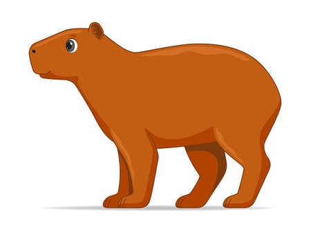 Capybara animal standing on a white background. Cartoon style vector illustration