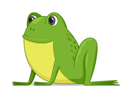 Frog sitting on a white background. Cartoon style vector illustration Illustration