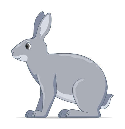 Hare sitting on a white background. Cartoon style vector illustration