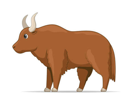 Yak standing on a white background. Cartoon style vector illustration