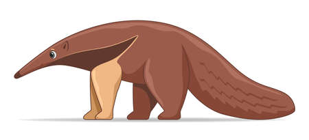 Giant anteater standing on a white background. Cartoon style vector illustration