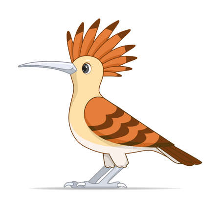 Red hoopoe bird on a white background. Cartoon style vector illustration Illustration