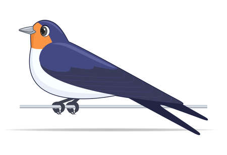 Swallow bird on a white background. Cartoon style vector illustration