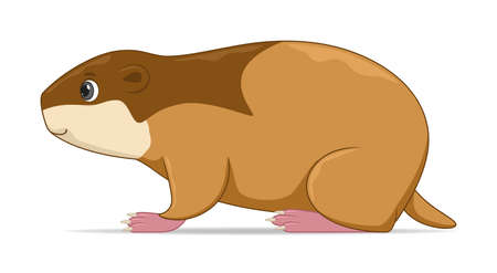 Lemming standing on a white background. Cartoon style vector illustration