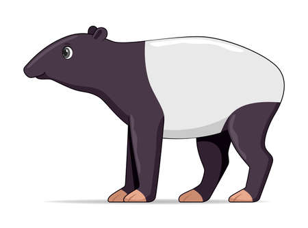Tapir standing on a white background. Cartoon style vector illustration Illustration