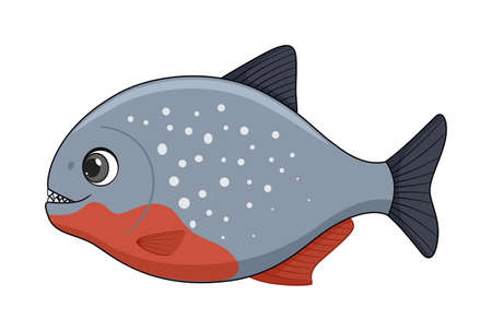 Piranha fish on a white background. Cartoon style vector illustration