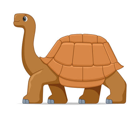 Giant galapagos tortoise standing on a white background. Cartoon style vector illustration