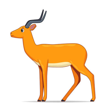 Impala antelope animal standing on a white background. Cartoon style vector illustration