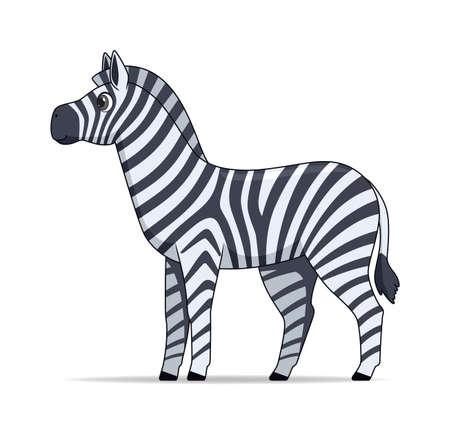 Zebra animal standing on a white background. Cartoon style vector illustration