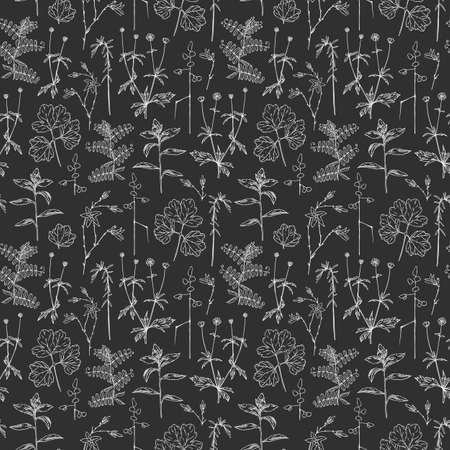 Field grass seamless pattern in hand drawn style. Wild nature herbal pattern. Vector leaf seamless pattern. Fabric design. Seamless pattern fashion style.