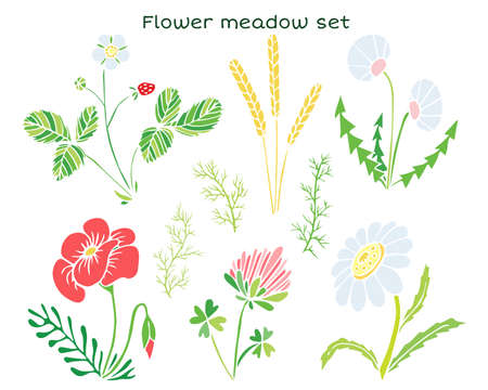 Vector flowers set. Naive childish illustration with strawberry, chamomile, dandelion, clover, ears and poppy flower. Ilustrace