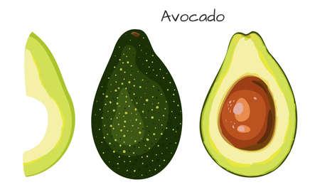 Avocado isolated on white background. Healthy nutrition. Vegan, vegetarian diet. Whole vegetable. Organic raw vegan healthy food. Vector illustration for design. Reklamní fotografie - 131775822