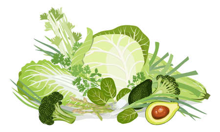 Composition of vegetables. Chinese-cabbage, White-cabbage, Squash, Leek, Green onion,Tats, Asparagus, Broccoli, Avocado, Peas, cucumbers, Parsley, Celery. Healthy nutrition.Vegan. Vector illustration.