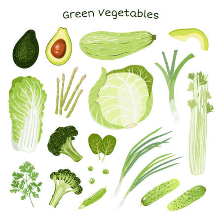Set of vegetables. Chinese-cabbage, White-cabbage, Squash, green Leek, Green onion, Tats, Asparagus, Broccoli, Avocado, Peas, cucumbers, Parsley, Celery. Healthy nutrition. Vegan. Vector illustration.