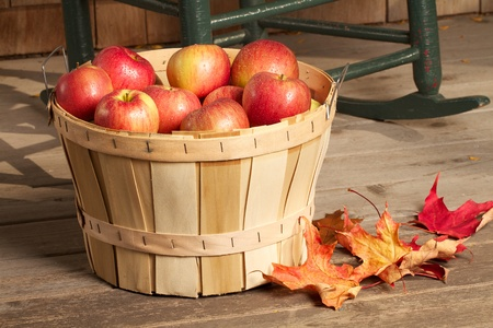 Shiny red apples fill a bushel basket, which sits on a rustic wooden porch  Defocused background of cedar shingles and cropped antique rocking chair  Horizontal format