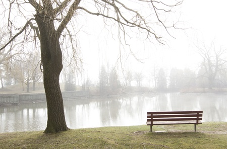 Rising mist over peaceful lake with solitary empty park bench and budding tree silhouetted in foreground. Trees on far shore obscured by fog. Horizontal with copy space.