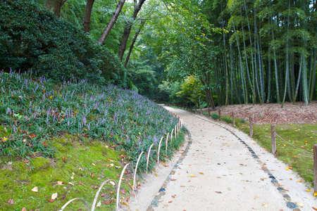 recedes: Traditional earthen path recedes bamboo grove in Korakuen Garden, Japan