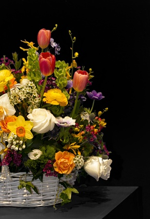 Colorful variety of fresh spring flowers and bulbs fill a wicker basket  Old Master colors with black background and copy space