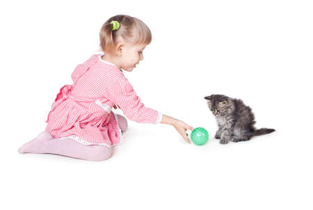 The girl plays with a kitten, an interior, white background photo
