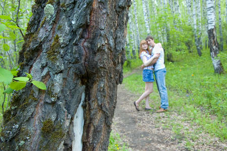 couple in love walking in the woods photo
