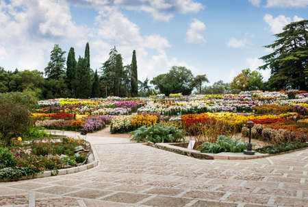 Type in the Botanical Garden, Yalta photo