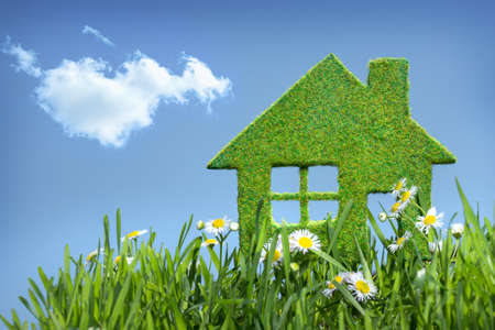natural health: house from grass on blue sky Stock Photo