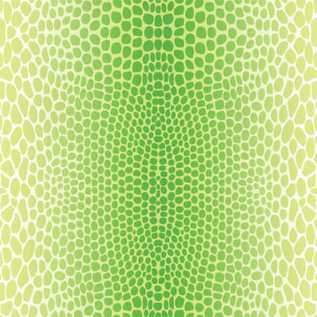 snake skin: Snake skin, reptile seamless pattern Illustration