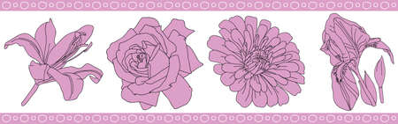 flowers rose pattern, iris and lily, vector illustration Vector