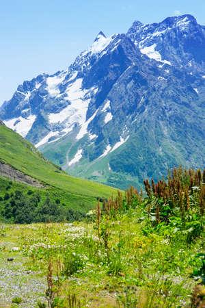 dombai: The tops of the mountains. Village Dombay, Karachay Cherkessia Republic, Russia