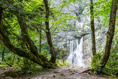 abkhazia: Gegsky waterfall in the forest, Abkhazia