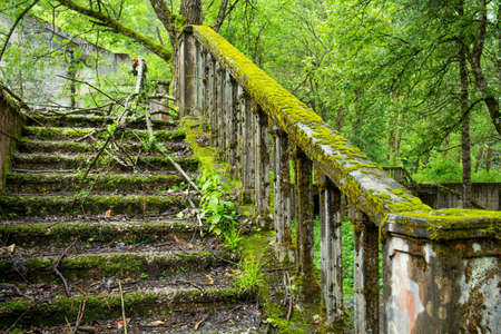 abkhazia: Abandoned park near Lake Riza. Abkhazia. Stock Photo