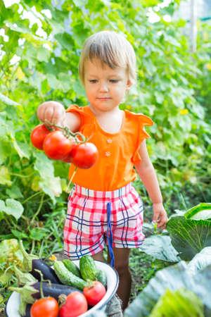 obesidad infantil: Chica con vehículos de la cosecha en el jardín