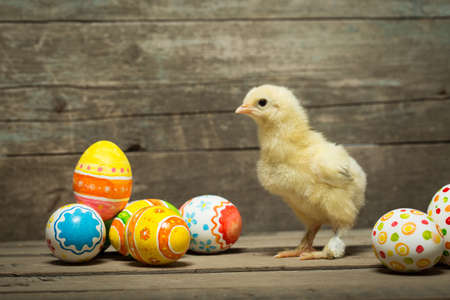 Easter eggs and chicken on wooden boards
