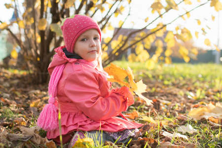girl collect autumn leaves, baby three years old on a walk