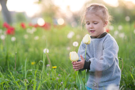 The girl is three years old, walking along the spring clearing with flowers