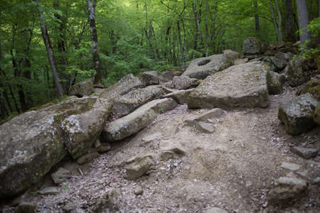 Dolmen in the forest, the valley of the river Janet. Russia. Banco de Imagens