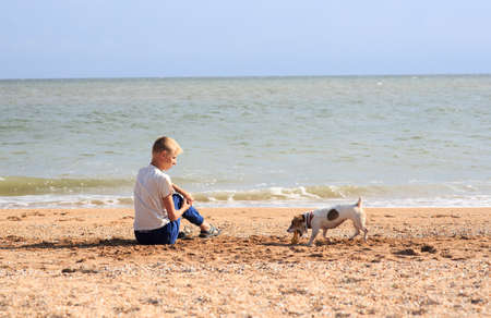 The boy is playing with the Jack Russell Dog on the beach Archivio Fotografico