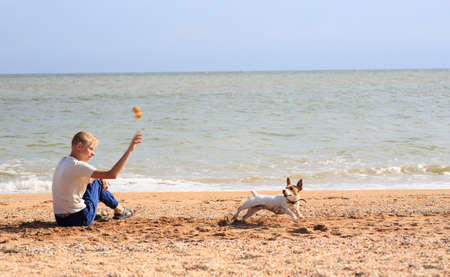 The boy is playing with the Jack Russell Dog on the beach Standard-Bild