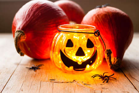 Halloween night decoration concept. Scary jack-o-lantern candle holder with pumpkins, spiders and maple leaves on old natural wooden background. Selective soft focus. Shallow depth of field. Text copy space. Stock Photo